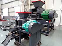Rice Husk Briquette Machine and Briquette Plant
