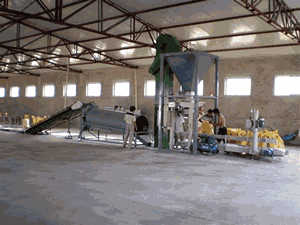 camel gypsum crusher machine price in cebu