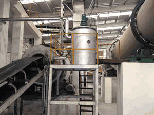mongolia rice straw pellet mill for fuel for sale