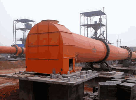 Large Scale Industrial Drum Rotary Dryer for Wood Sawdust